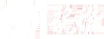 烟台长岛,大钦岛,砣矶岛野生海参,高档淡干海参礼盒加盟-烟台龙潜海产品有限公司